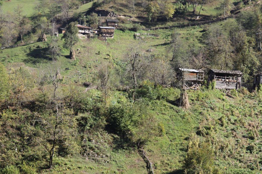 Efeler Köyünden Manzaralar